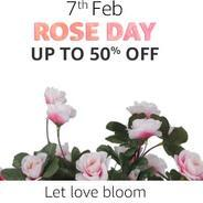 Get 7th Feb. Rose Day - Upto 50% OFF | Amazon Offer