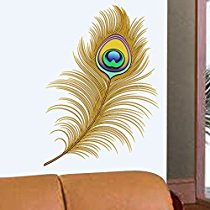 Get Decals Design 'Oh Dreamy Peacock Feather' Wall Sticker at Rs 109 | Amazon Offer