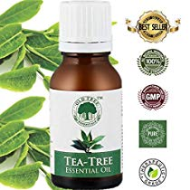 Get Old Tree Tea Essential Oil for Skin, Hair and Acne Care, 15ml at Rs 170 | Amazon Offer