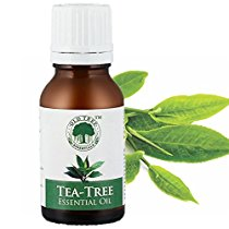 Get Old Tree Tea Tree Essential Oil For SkinHair and Acne Care 15 ml at Rs 241 | Amazon Offer