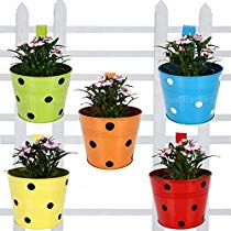 Get Trust basket Single Pot Railing Planter, Set of 5 (Red, Yellow, Blue, Orange, Green) at Rs 939 |