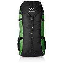 Get Wildcraft 60 Ltrs Green Rucksack (AM RK 2) at Rs 2199   Amazon Offer