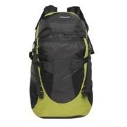 Get Zwart 414107 40 L Free Size Backpack (Black, Green) at Rs 598   Flipkart Offer